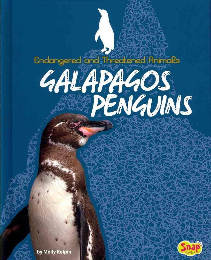 Galapagos Penguins By Kolpin, Molly
